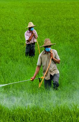杀虫剂产品